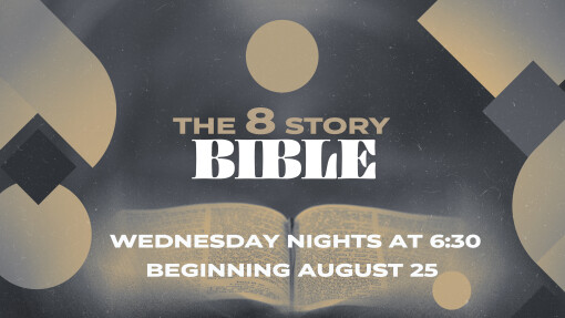 The 8 Story Bible Session 3